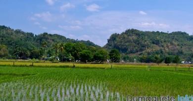 Basay Negros Oriental