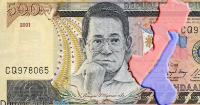 No-Budget-for-NIR and Federalism