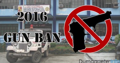 Gun Ban 2016