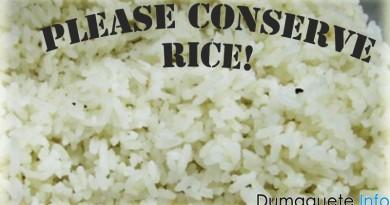 Half Cup Rice Serving