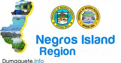 Negros Island Region (NIR)