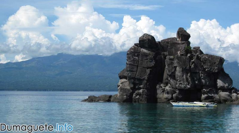Apo-Island-for-better-eco-tourism