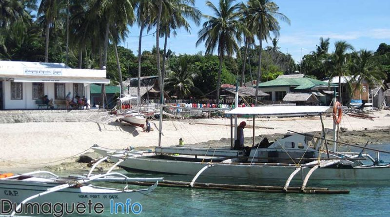 Local dive masters in Apo Island