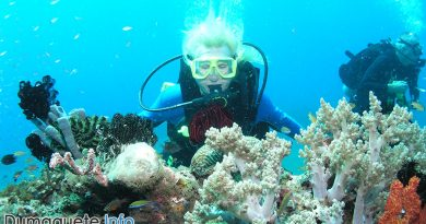 Atlantis Dive Resort Dumaguete in Dauin