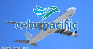 Cebu Pacific Dumaguete Davao Flights
