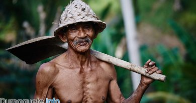 Centenarians in NIR - Negros Oriental and Negros Occidental