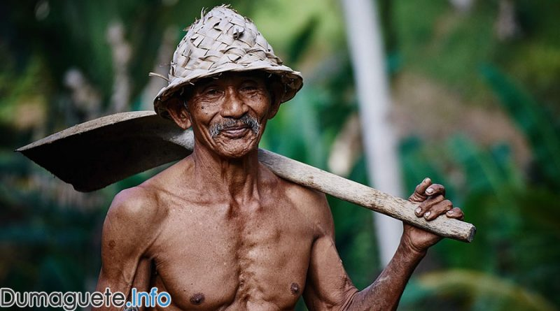 Centenarians in NIR - Negros Oriental and Negros Occidental