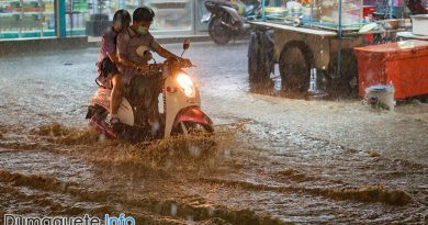 Flash Flood vs Dumaguete Road and Bridge