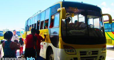 New Tour Buses in Cebu