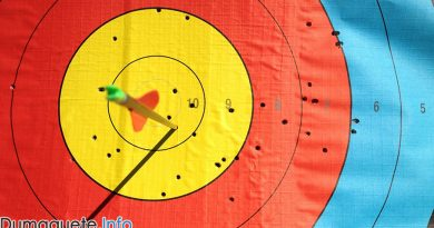 Philippine Claims Silver in SEAG Archery
