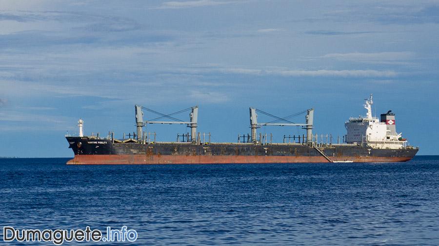 cebu port authorities new terminal fee system dumaguete info