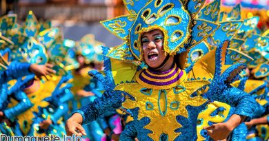Hudyaka Festival 2017 - Bais City - Negros Oriental