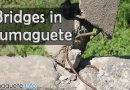 Funds for Bridges in Dumaguete