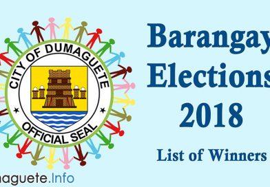 Barangay Elections 2018 - Success! -List of Winners