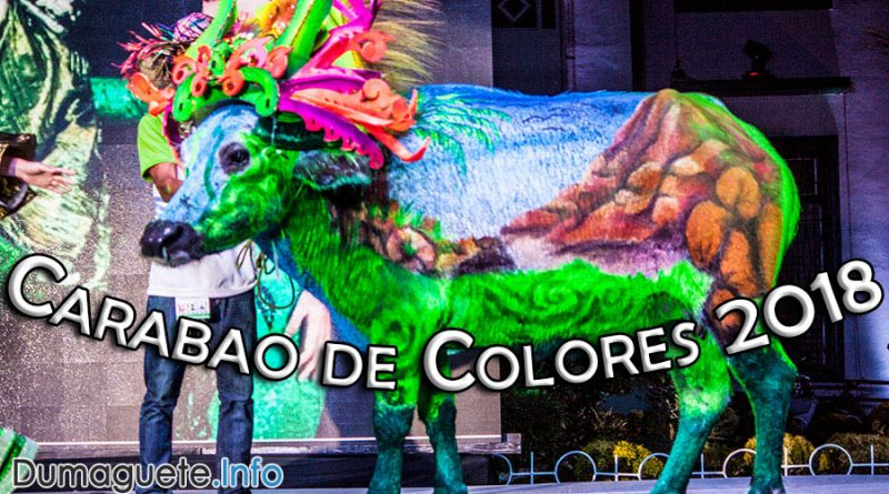 First Ever Carabao Festival in Negros! - Carabao de Colores 2018