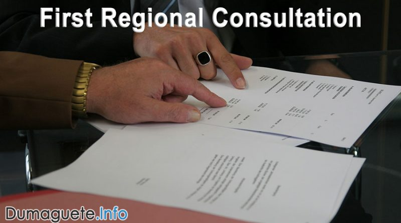 First Regional Consultation on Federalized Negros