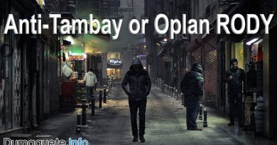 Guidelines for Anti-'tambay' or Oplan RODY