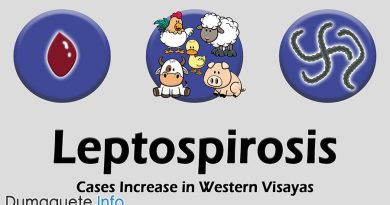 Leptospirosis Cases Increase in Western Visayas