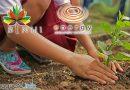 BINHI & Greening Program in Negros Oriental Continues