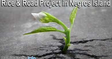 """Rice and Road"" Project in Negros Island"