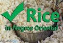 No shortage of rice in Negros Oriental