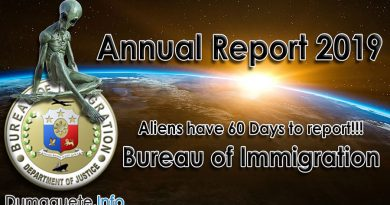 Bureau of Immigration Annual Report