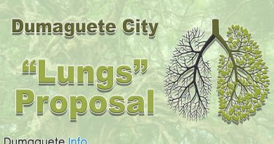 Dumaguete City - Lungs Proposal