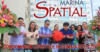 Marina Spatial - Condominium Lifestyle in Dumaguete City
