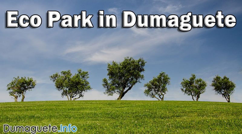 NEVER-Ending Story Part 8 Eco Park in Dumaguete