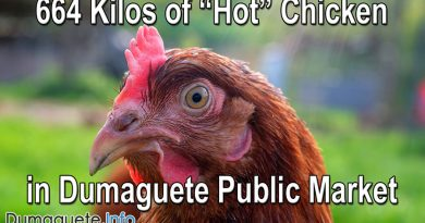 "664 Kilos of ""Hot"" Chicken in Dumaguete Public Market"