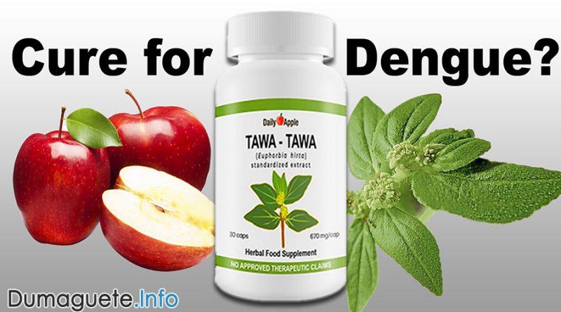 Daily Apple Tawa-tawa Herbal Capsules - A Cure for Dengue