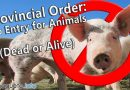 Provincial Order – No Entry for Animals (Dead or Alive) - African Swine Fever