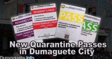 New Quarantine Passes in Dumaguete City (Red & Purple)