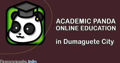 Academic Panda in Dumaguete City – Online Education