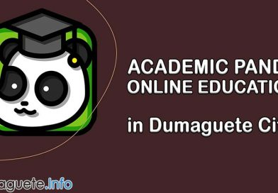 Academic Panda in Dumaguete City – Online Education