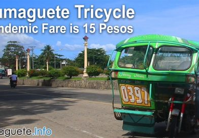 Dumaguete Tricycle – Pandemic Fare is 15 Pesos